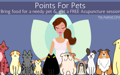 Points For Pets – FREE Community Acupuncture At The Axelrad Clinic